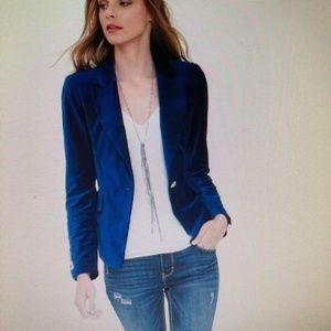 WHBM Royal Blue Velvet Blazer